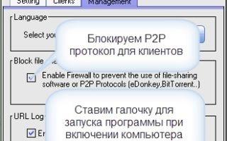 Как раздать wi-fi с ноутбука windows 8 (8.1): советы пользователям