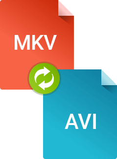 Как конвертировать mkv в avi