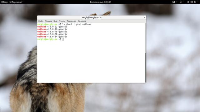 Как узнать версию ubuntu и версию ядра системы