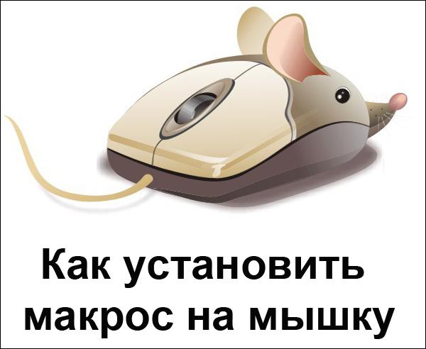 Как установить макрос на мышку